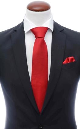 637620e5ff4f8 Tie and handkerchief set - Buy tie + hanky online at Neckwearshop